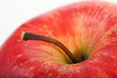 Apple closeup — Stock Photo