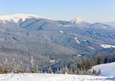 Winter mountain landscape with alpine skiing tracks cuttings in — Stok fotoğraf