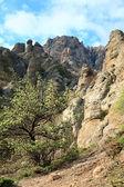 Rocky mountain view — Stock Photo