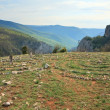 Concentric stone circles on spring plateau - Stock Photo