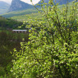 Spring country mountains landscape (Crimea, Ukraine) - Stock Photo