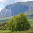 Stock Photo: Spring mountains landscape (Crimea, Ukraine)