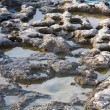 Pools on stony coastline - Stock Photo