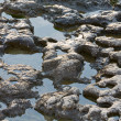 Stock Photo: Pools on stony coastline