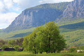 Spring mountains landscape (Crimea, Ukraine) — Stock Photo