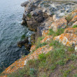 Evening summer coastline — Stockfoto