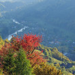 Autumn mountain view — Stockfoto