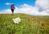 Woman with tourist knapsack on mountain — Stock Photo