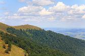 Summer misty mountain landscape — Stock Photo