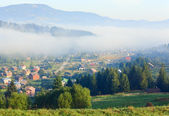 Mountain village (summer countryside landscape) — Stockfoto