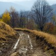 Autumn mountain road view — Stock Photo