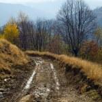 Autumn mountain road view — Stock Photo