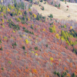 Stock Photo: Autumn mountainside view