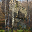 Lofty stone in forest — Stock Photo #4664596