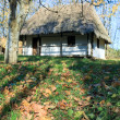 Country wooden hut and autumn garden grass near - Stock Photo