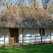 Old wooden house with thatched roof — Stock Photo #4664953