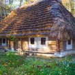 Historical country wooden hut with thatched roof — Stock Photo #4665046