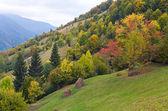 Autumn mountain — Stock Photo