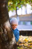 Small girl near autumn maple. — Stock Photo