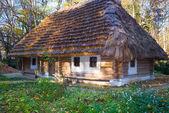 Historiska land trä koja med halmtak — Stockfoto