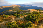 Autumn mountain plateau view — Stock Photo
