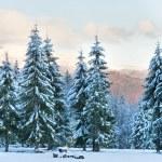 Winter sunset mountain landscape — Stock Photo #5034076