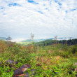 September Carpathian mountain hill - Stockfoto