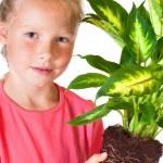 Girl with houseplant — Stock Photo