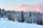 зимний закат горный пейзаж — Стоковое фото
