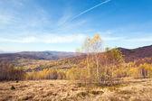 Autumn country landscape (Carpathian, Ukraine). — Stock Photo