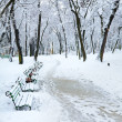 Stock Photo: Winter city park