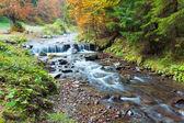 Rotsachtige herfst stream — Stockfoto