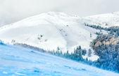 冬の雪と風のマウンテン ビュー — ストック写真