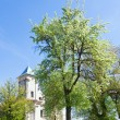 Stock Photo: Old church (Sydoriv village, Ternopil region, Ukraine)