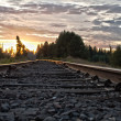 Idaho Tracks — Stock Photo