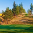 Train and a Golf Course — Stock Photo