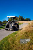 Golf vozík prázdná — Stock fotografie