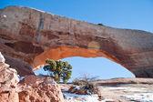 национальный парк арок — Стоковое фото