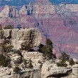Stock Photo: Grand Canyon Landscape
