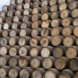 Barrel mountain — Stock Photo