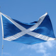 Scottish flag — Stock Photo