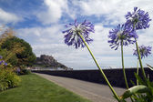 Exotic flowers frame Mount Orgueil castle on Jersey — Stock Photo