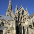 Stock Photo: Salisbury Cathedral in Wiltshire