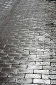 Silvery pavement — Stock Photo