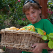 Boy with fruit basket . — Stock Photo