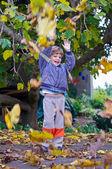 Garçon dans le parc en automne. — Photo