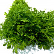 Rucola isolated on white background . — Stock Photo