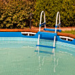 Swimming Pool  . — Stock Photo