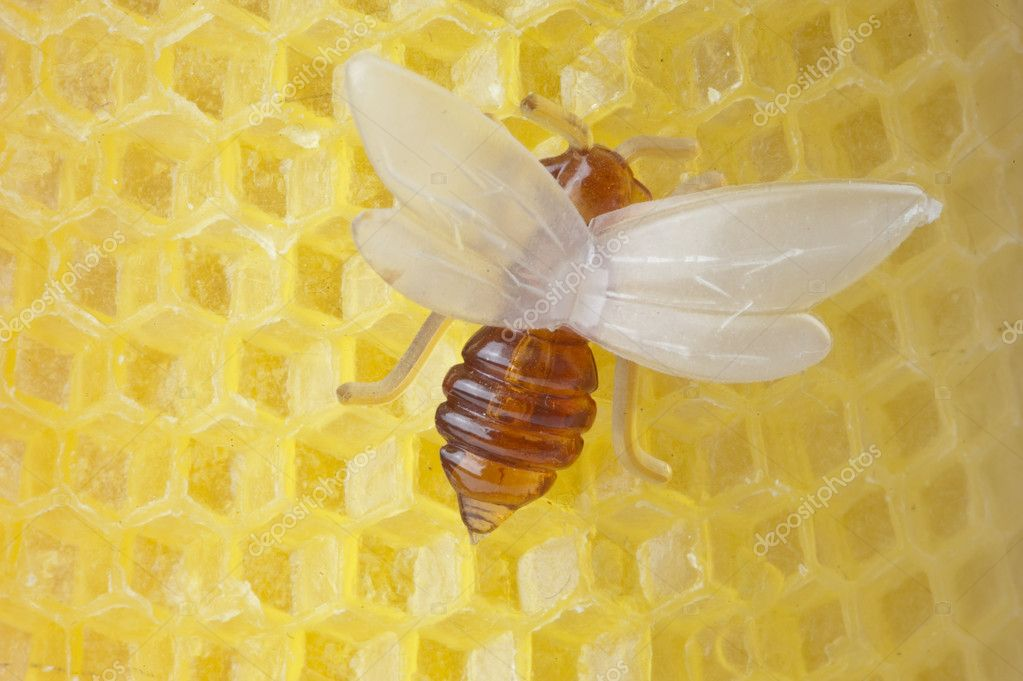 Beeswax with an artificial bee, piece of the candle — Foto de Stock   #4419489