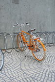 Citrus bicycle — Stock Photo